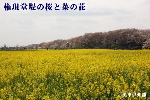 gardening_3507.jpg