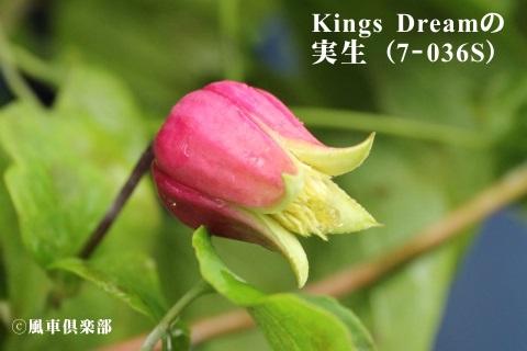 gardening_3688.JPG