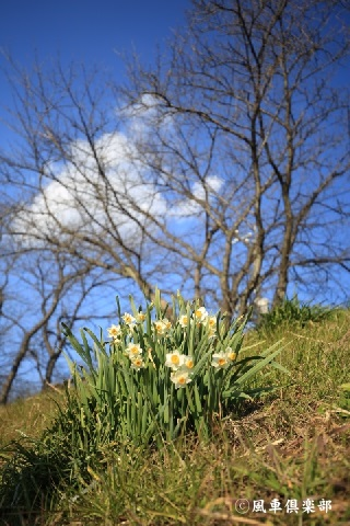 gardening_3851.jpg