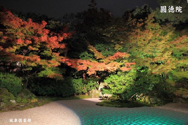 kyoto_111806.jpg