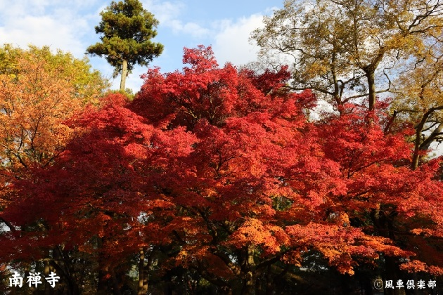 kyoto_111902.jpg