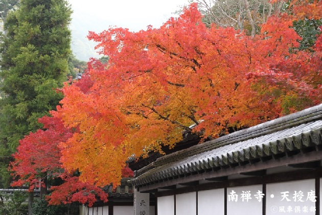 kyoto_111906.jpg