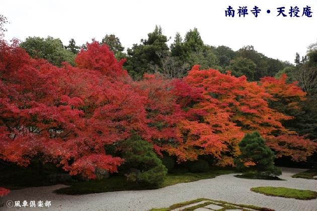 kyoto_111907.jpg