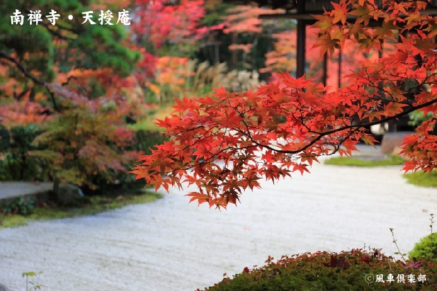 kyoto_111910.jpg