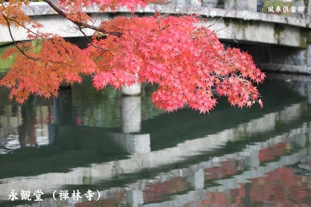 kyoto_111912.jpg