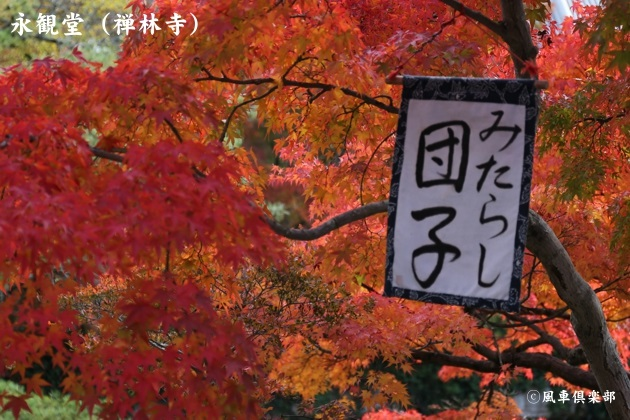 kyoto_111914.jpg