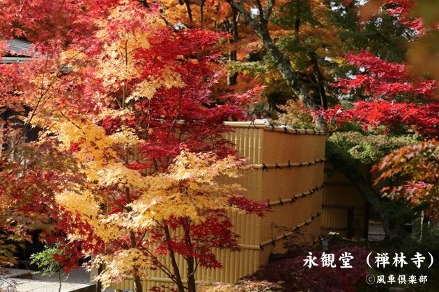 kyoto_111915.jpg