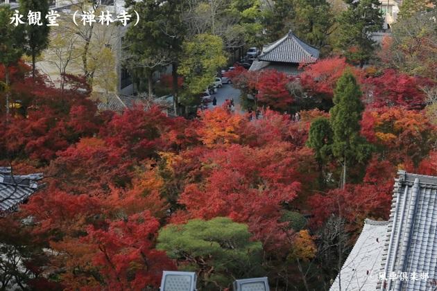 kyoto_111919.jpg