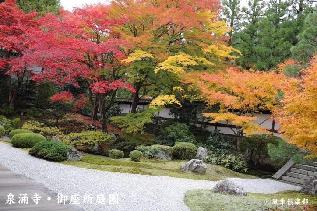 kyoto_111921.jpg