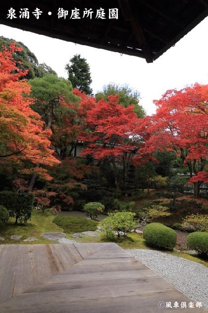 kyoto_111925.jpg