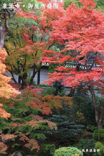 kyoto_111926.jpg