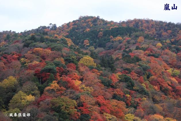 kyoto_111932.jpg