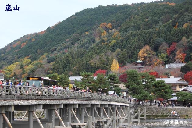 kyoto_111933.jpg