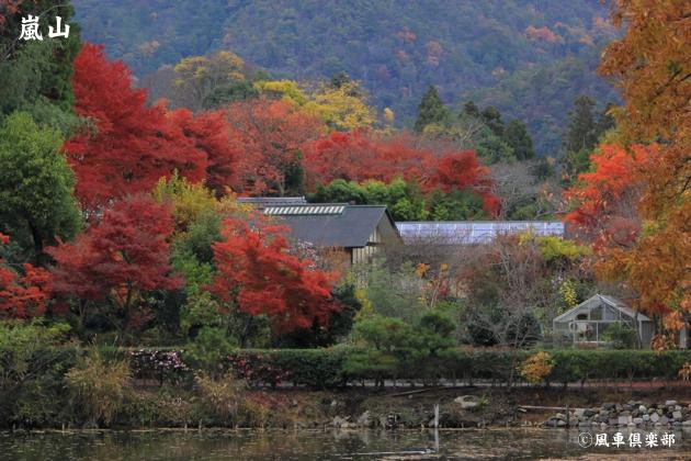 kyoto_111936.jpg
