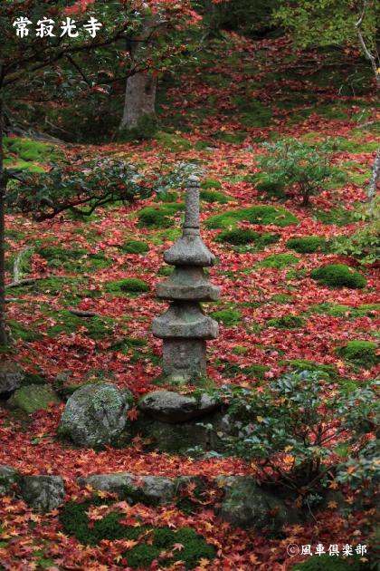 kyoto_111942.jpg