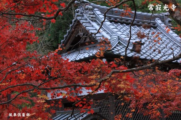 kyoto_111945.jpg