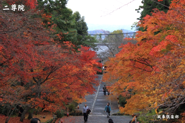 kyoto_111949.jpg