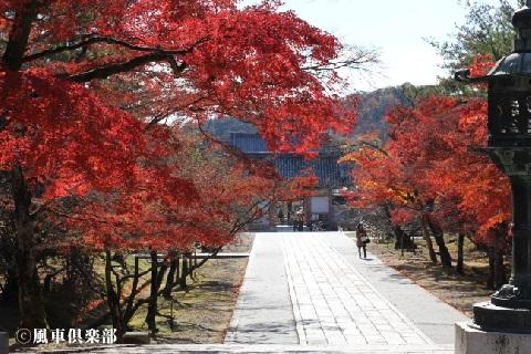 kyoto_1129304.JPG